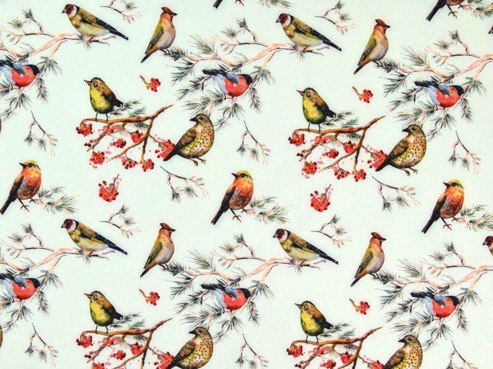 Birds In Mint Digital Softshell