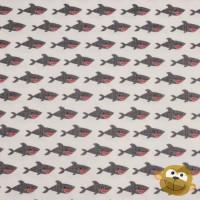 Blackbeard Shark White