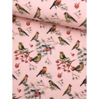 Birds In Rose Digital Softshell