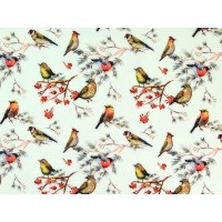 Birds In Mint Digital Softshell